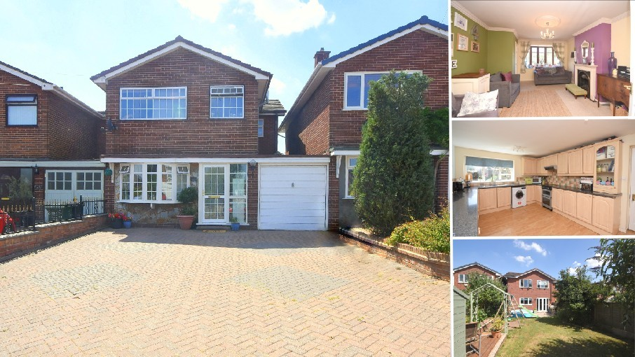 **NEW INSTRUCTION COTON IN THE ELMS**